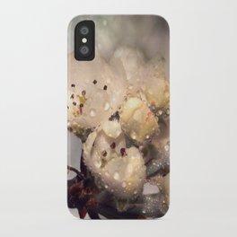 Springtime galaxy iPhone Case