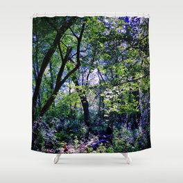Pleasure of the Pathless Woods Shower Curtain