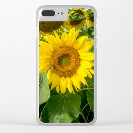The Bright One by Teresa Thompson Clear iPhone Case