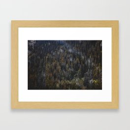 THE TREES II Framed Art Print
