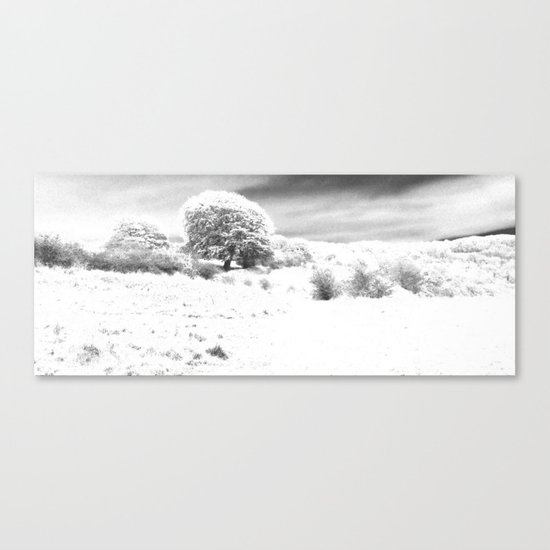 Haresfield In The Snow Canvas Print
