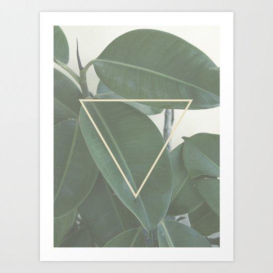 ficus nature Art Print