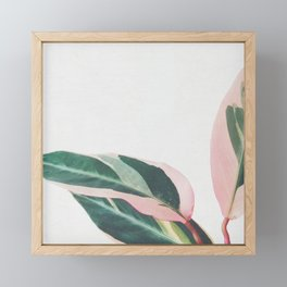 Pink Leaves II Framed Mini Art Print
