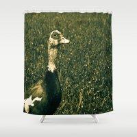 duck Shower Curtains featuring Duck by MucklowArt