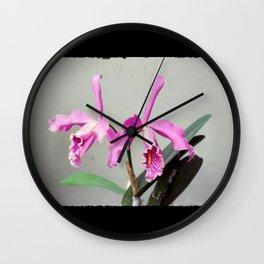 Cattleya Wall Clock