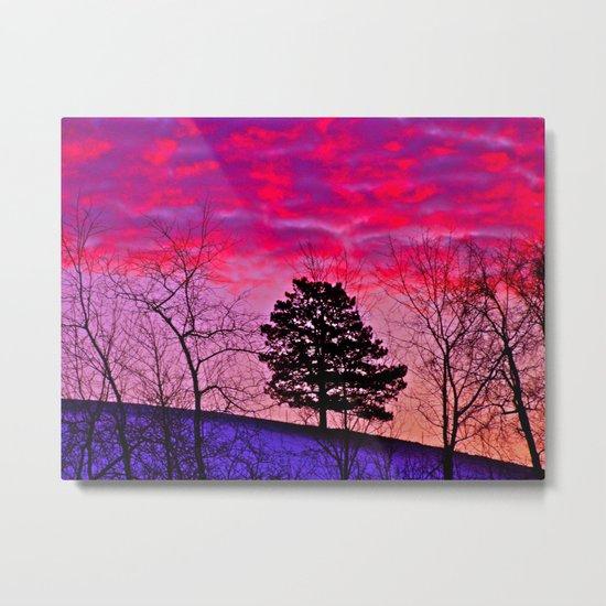 Winter's Sky Metal Print