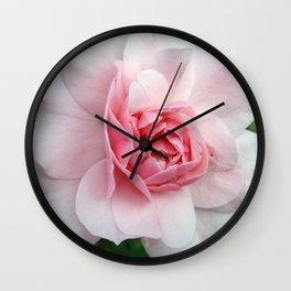 Pink Rose Wall Clock