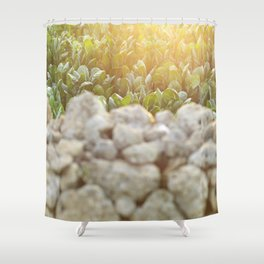 Sunset in Italy, fine art, landscape photo, Sicily photography, Puglia, Apulia, nature lover, love Shower Curtain