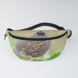 Looking Straight Fanny Pack