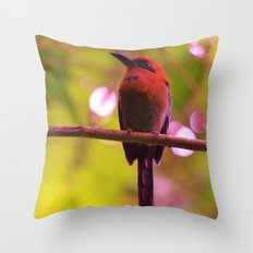Old School Tweet Throw Pillow