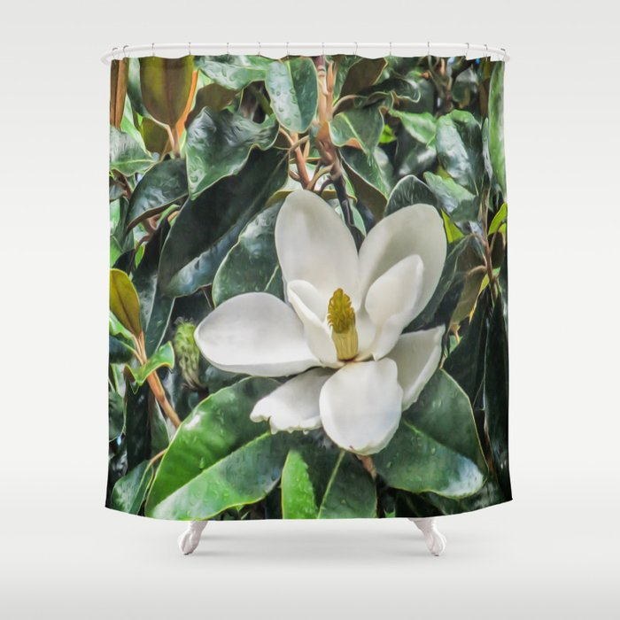Soft Magnolia Shower Curtain