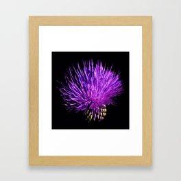 Cirsium Framed Art Print