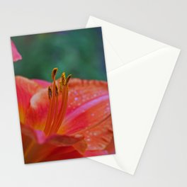 Simple Stamens Stationery Cards