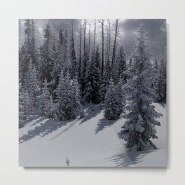Winter Monoland Metal Print