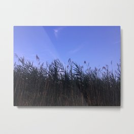 Grasses at Dusk Metal Print
