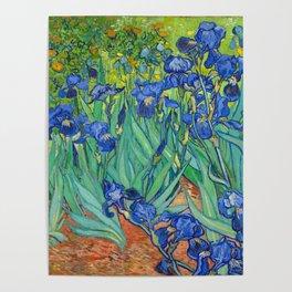 Vincent Van Gogh Irises Painting Poster