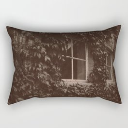 Secret Window Rectangular Pillow