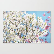 White Dogwood Floral Canvas Print
