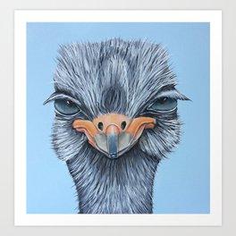 Tessa, the Somali Ostrich Art Print