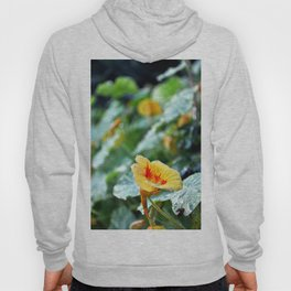 flower with frost Hoody