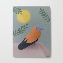 Capuchinbird Metal Print
