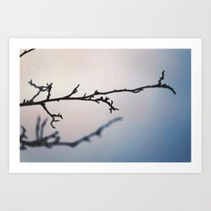 Empty Branch Art Print