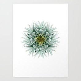 Mandala Pineapple Art Print