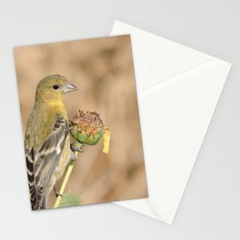 Lady Lesser Goldfinch on a Desert Sunflower Stationery Cards