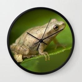 Spring Peeper Wall Clock