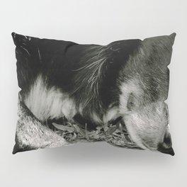 Liquorice Pillow Sham