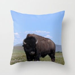 King of the Plains Throw Pillow