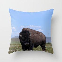 King of the Plains Throw Pillow