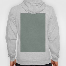 Inducing Serenity Greyish Blue Green Solid Color Pairs To Sherwin Williams Jasper Stone SW 9133 Hoody