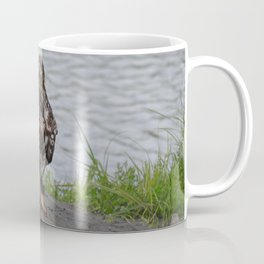 Eagle - Immature Baldy Coffee Mug
