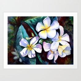 Evening Plumeia Art Print