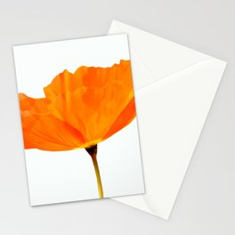One And Only - Orange Poppy White Background #decor #society6#buyart Stationery Cards