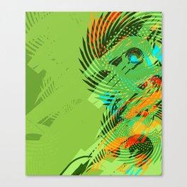 11317 Canvas Print