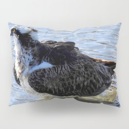 Splish Splash Pillow Sham