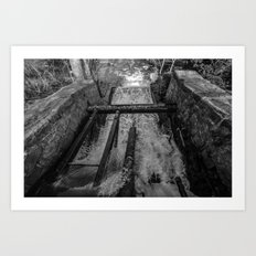 Rush(Black & White) Art Print