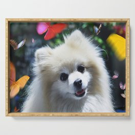 Buffy the Celebrity Pomeranian and Butterflies Serving Tray
