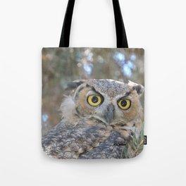 Young Owl at Noon Tote Bag