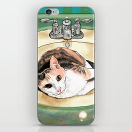 Catrina in the Sink iPhone Skin