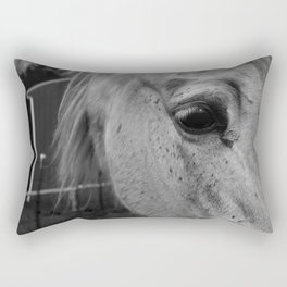 Beauty in the eyes Rectangular Pillow