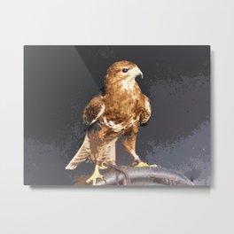 Bold Golden Eagle, Bird of Prey print Metal Print
