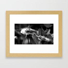Flover Framed Art Print
