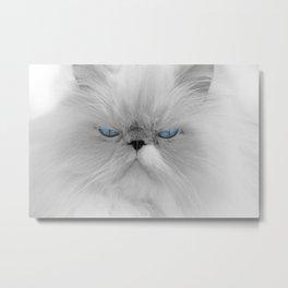 White Angry Cat Metal Print