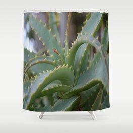 Aloe Vera Leaves  Shower Curtain