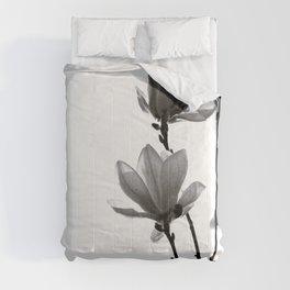 BLACK MAGNOLIA Comforters