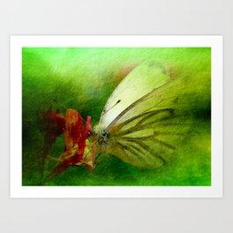 Butterfly's inn version 2 Art Print