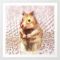 hamster Art Prints featuring hamster by dace k